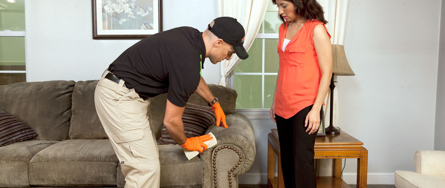 Indiana, PA carpet upholstery cleaning