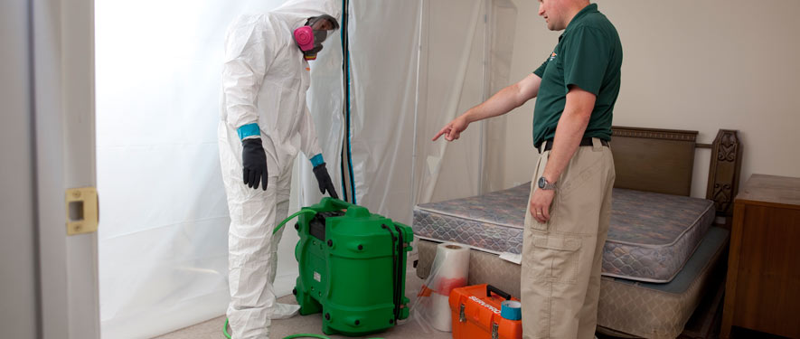 Indiana, PA mold removal process